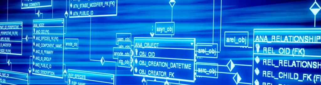 Por que Estudar Banco de Dados/Saláriso/Profissão